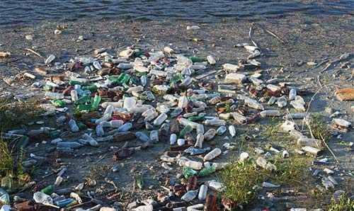 Used plastic bottles washed up on a muddy shore